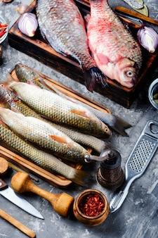 Vielzahl von rohem frischem fisch