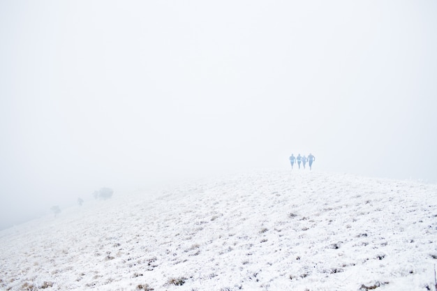 Vier sportmens, die hoch in die berge unter den wolken zur winterzeit laufen