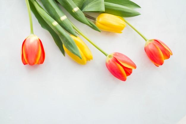 Vier tulpenblumen auf weißer tabelle
