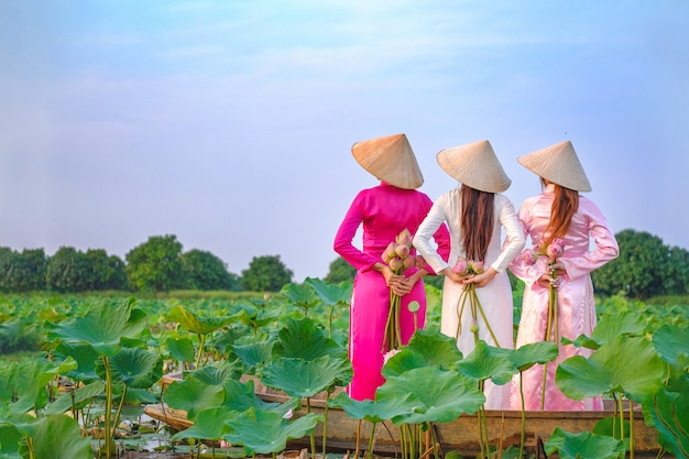 Vietnamesische frauen sammeln den lotus