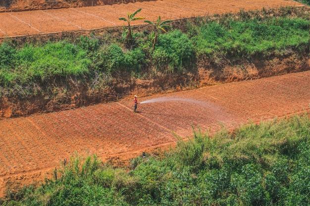 Vietnamesischer arbeiter hält einen wasserschlauch und gießt einen garten