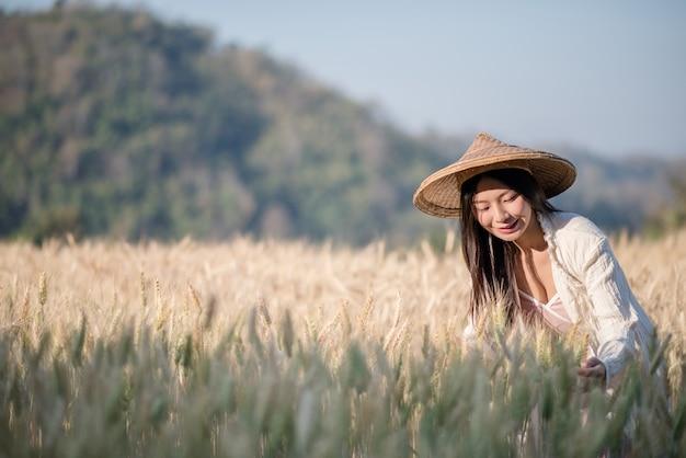 Vietnamesischer weiblicher landwirt weizenernte