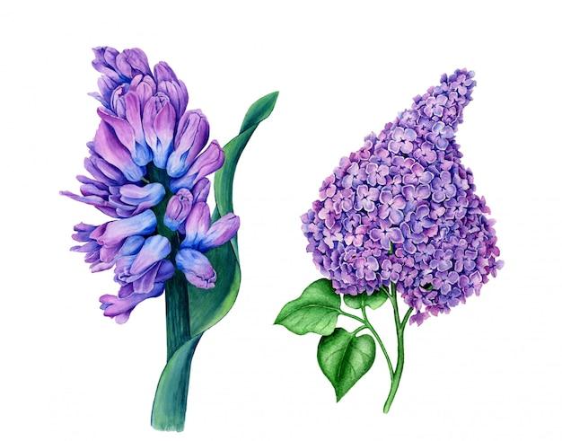Vintage aquarellblumen aus der botanischen sammlung
