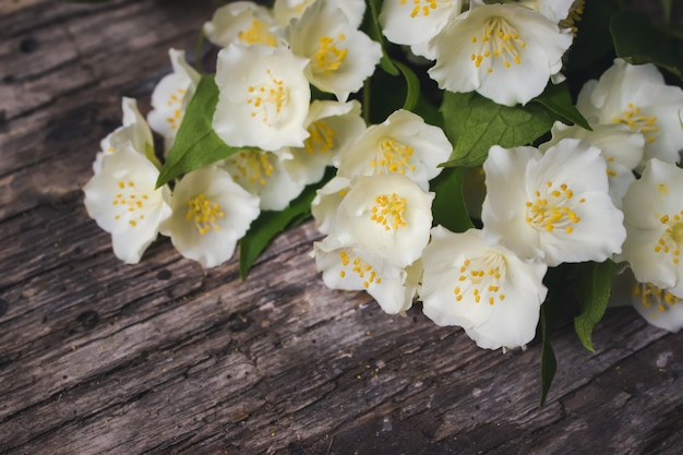 Vintage-farbton - konzeptblume des frühlings- oder sommerhintergrundes. kartenkonzept, pastellfarben