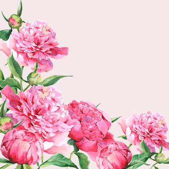Vintage grußkarte der rosa aquarellpfingstrosen