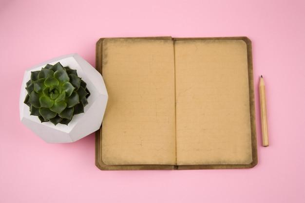 Vintages papiernotizbuch, bleistift und succulent im konkreten topf auf einem rosa pastellhintergrund