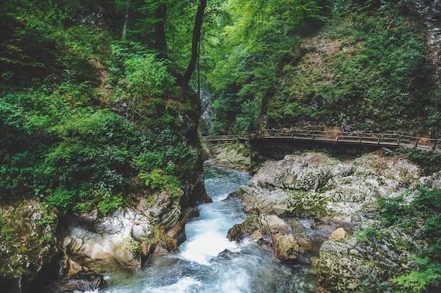 Vintgar-schlucht und holzweg, bled, slowenien