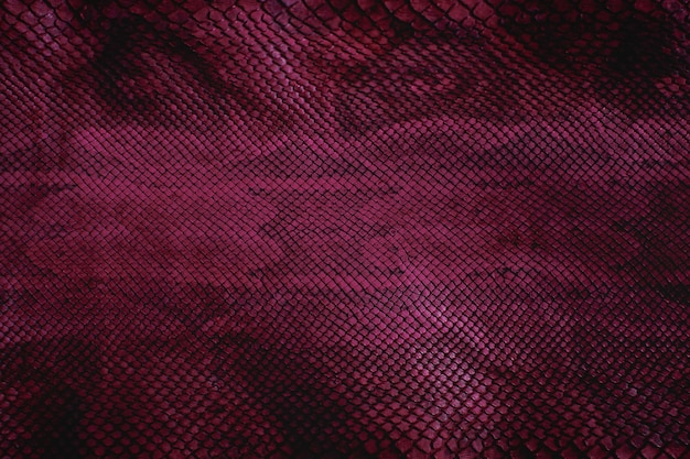 Violette schlangenhaut mit textur, reptil