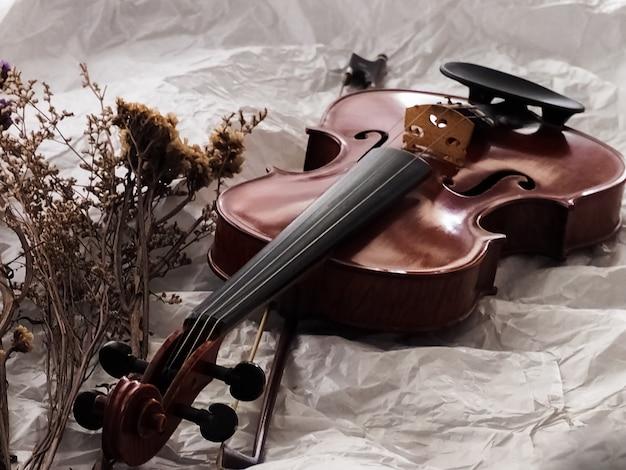 Violine und bogen setzten sich neben trockenblume auf hintergrund
