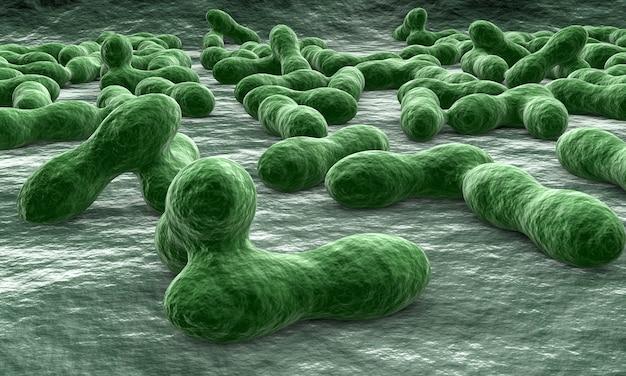 Viren und bakterien für die medizin