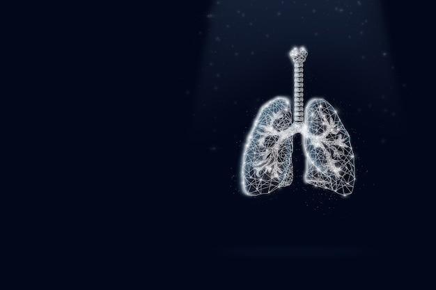 Virtuelle menschliche lungen auf dunkelblauem hintergrund. auf dunkelblauem hintergrund. niedriges poly, kopienraum.