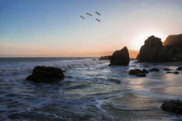 Vögel, die während eines atemberaubenden sonnenuntergangs über dem ozeanufer fliegen