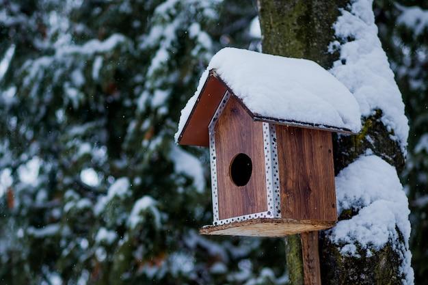 Vogelhäuschen im winterpark. vogelhaus, das draußen im winter auf baum bedeckt mit schnee hängt.