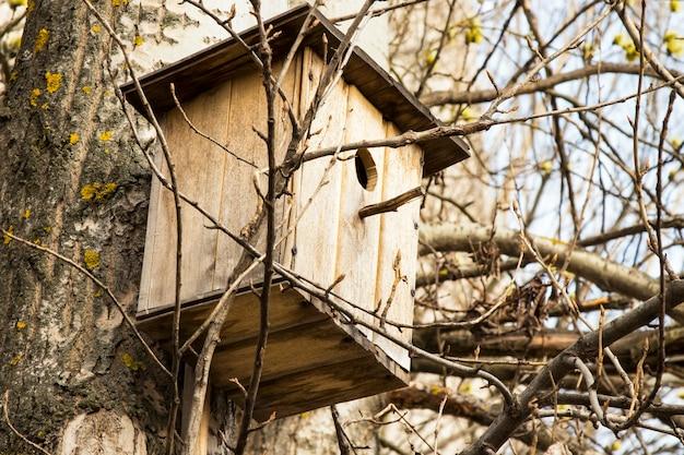 Vogelhaus am baum im frühling. zweig des obstbaums mit vogelhaus.
