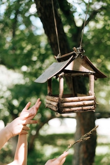 Vogelhaus auf dem baum und hände vogelwildnatur