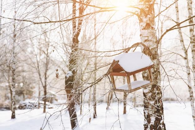 Vogelhaus auf dem sonnenuntergang im winterpark. frühling kommende konzept.