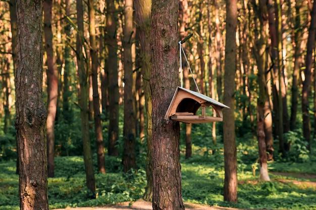 Vogelhaus auf einem baum im forest park, übergeben sie hölzernen schutz, damit vögel den winter verbringen