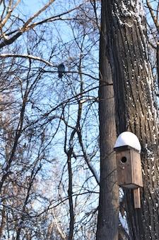 Vogelhaus im winterpark