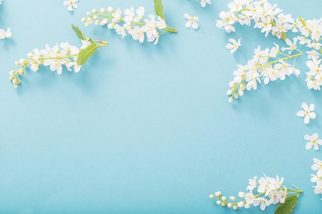 Vogelkirschblüten auf papier