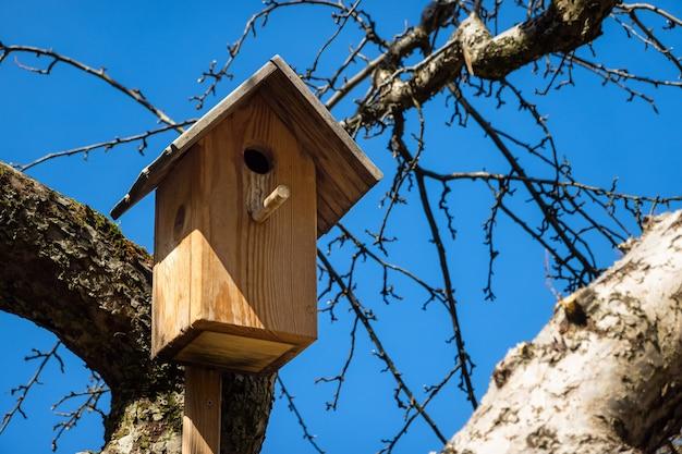 Vogelnistkasten im baum an einem sonnigen tag.