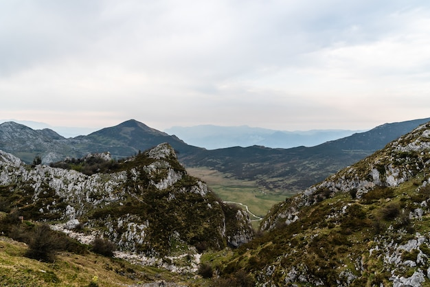 Vogelperspektive auf die schönen felsigen berge, die an einem wolkigen tag von bäumen bedeckt sind