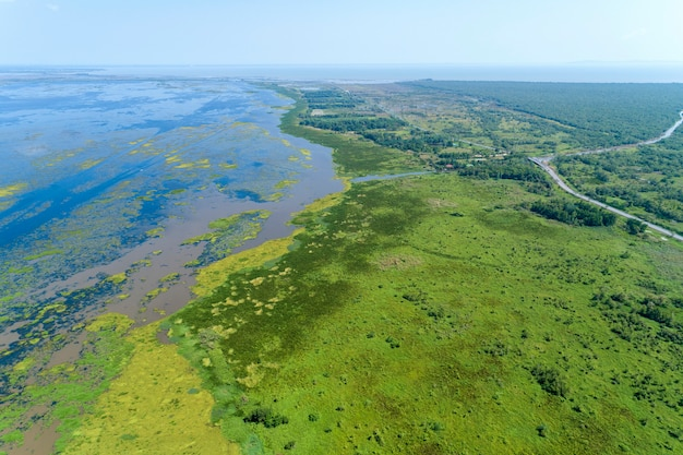 Vogelperspektive-brummen schoss spitze unten der schönen wildnisnaturlandschaft des grünen waldes und des sees