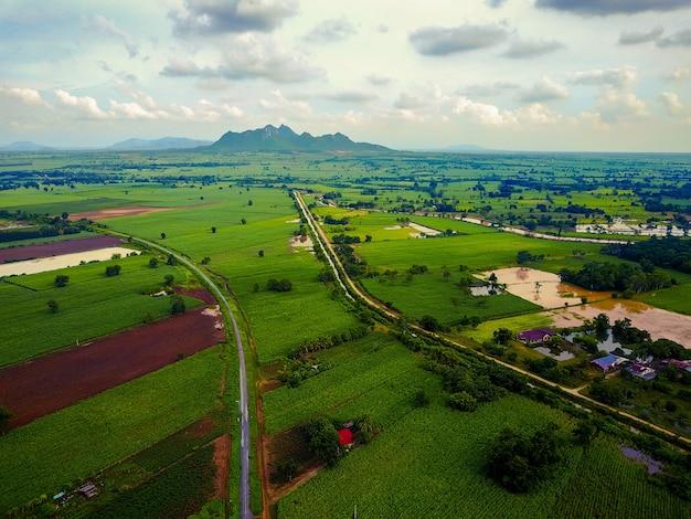 Vogelperspektive der eisenbahn und der straße durch die beträchtlichen zuckerrohrfelder mit den bergen