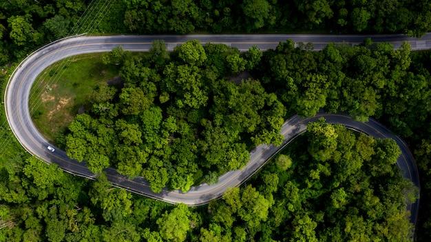 Vogelperspektive über tropischem baumwald mit einer straße, die mit auto, forest road durchläuft.
