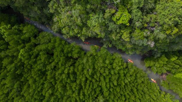 Vogelperspektive von ao tha lane nahe krabi, berühmter platz ao tha lane für kajak auf dem fluss mit berg- und mangrovenwald.