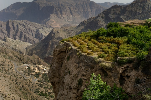 Vogelperspektive von riesigen und malerischen bergen und klippen, die teilweise mit grünen bäumen bedeckt sind