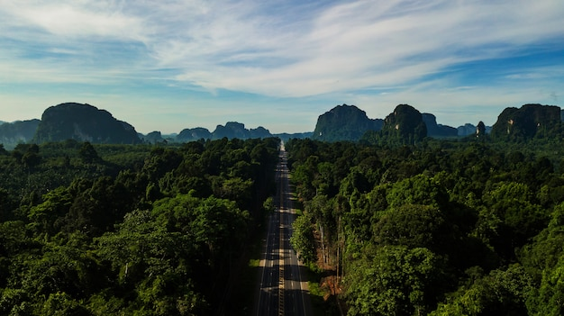 Vogelperspektivelandschaft des baums oder des waldes und der straße, krabi thailand - bild