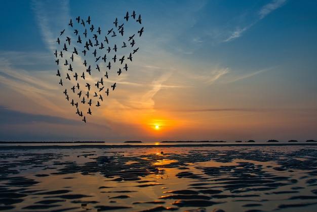 Vogelsilhouetten, die über dem meer gegen sonnenaufgang in form des herzens fliegen