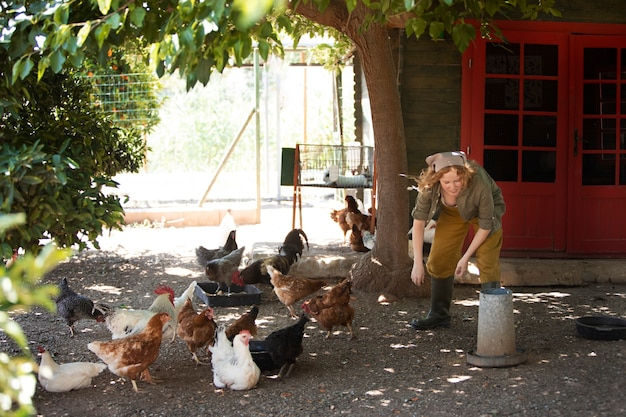 Voll erschossene frau, die hühner füttert