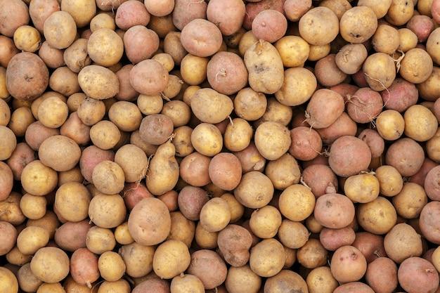 Vollbildaufnahme eines kartoffelfrischen rohen kartoffelhintergrundes und -textur