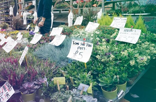 Volle blüte des blumenladens am markt