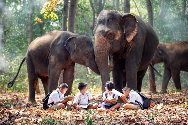 Volle länge der schüler, die durch elefanten im wald stehen