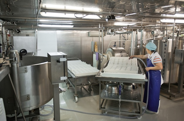 Volle länge von weiblichen arbeitern, die werkzeuge und ausrüstung in der käse- und molkerei, lebensmittelproduktion, kopierraum waschen