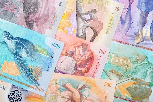 Voller satz maledivisches geld