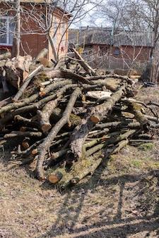 Vorbereitung von brennholz für den winter, kirschstämme auf einem haufen im hof gestapelt
