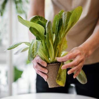 Vorderansicht der frau, die pflanze drinnen kultiviert