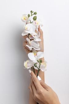 Vorderansicht der hände, die orchidee anhalten