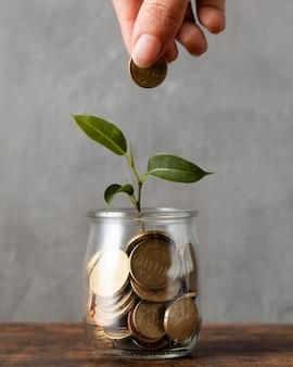 Vorderansicht der hand, die münze zum glas mit pflanze und anderen münzen hinzufügt