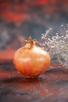 Vorderansicht frischer granatapfel getrockneter wildblumenzweig auf isoliertem hintergrundkopierraum