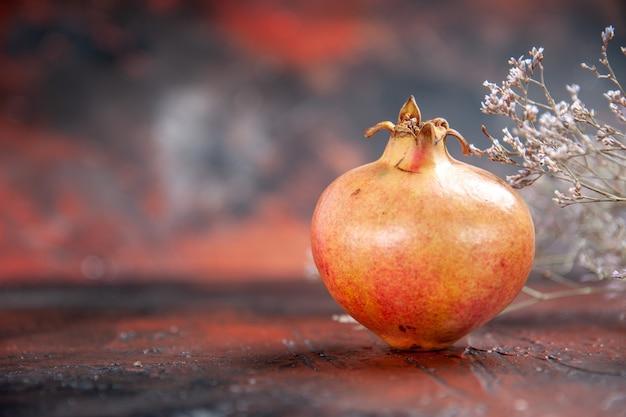 Vorderansicht frischer granatapfel getrockneter wildblumenzweig
