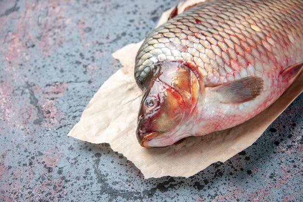 Vorderansicht frischer roher fisch auf blauer oberfläche mahlzeit fleisch wasser nahrung ozean horizontale tier meeresfrüchte haifarbe