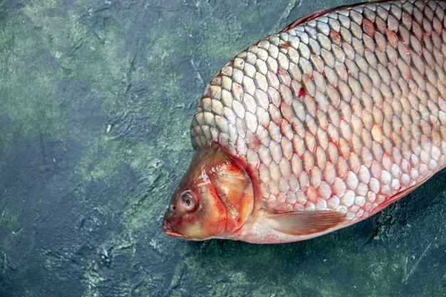 Vorderansicht frischer roher fisch auf dunkelblauer oberfläche fleischwasser ozeannahrung omega-farbe horizontale mahlzeit meeresfrüchte
