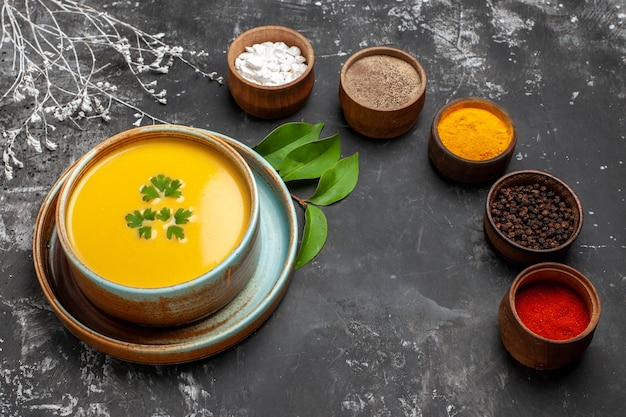 Vorderansicht kürbissuppe mit gewürzen auf dunklem tisch