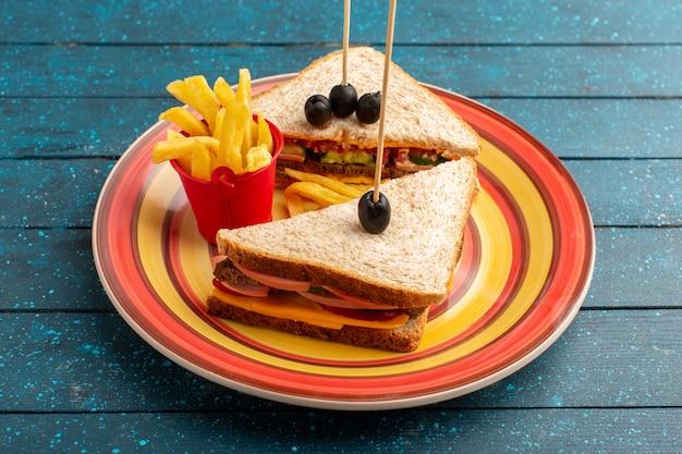 Vorderansicht leckere sandwiches innerhalb der bunten platte innerhalb des käseschinkens mit pommes frites auf blau