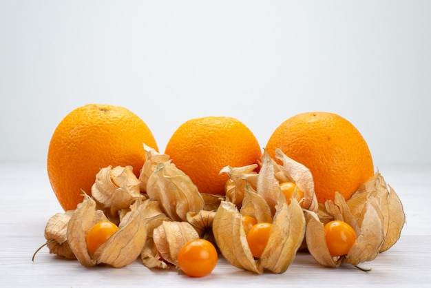 Vorderansicht orange und physalisiert frisch auf weiß