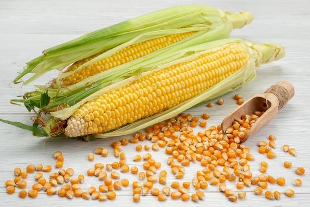 Vorderansicht rohe gelbe hühneraugen mit schalen und maissamen auf weißem, rohem maisfuttermehl